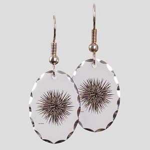 Sea Urchin Earring Oval Charm