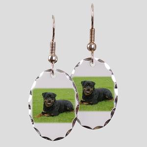 Rottweiler 9W025D-046 Earring Oval Charm
