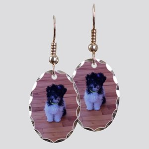 Schnoodle love Earring Oval Charm