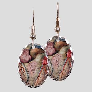 Heart Earring Oval Charm