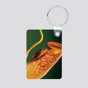 Pitcher plant Aluminum Photo Keychain