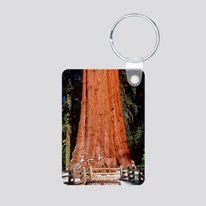 Base of Giant Sequoia 'Gen Aluminum Photo Keychain