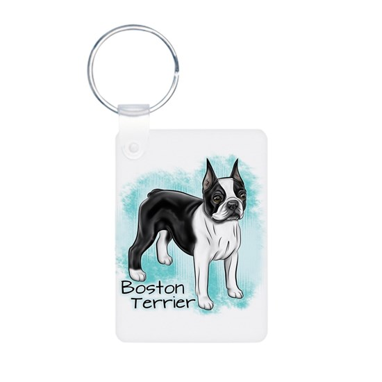 Boston Terrier on Blue Background