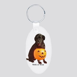 trick or treat Aluminum Oval Keychain