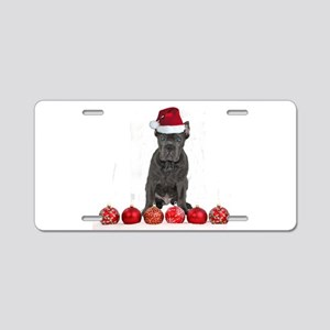 Christmas Cane Corso Puppy Aluminum License Plate