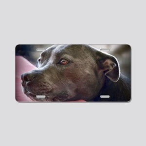 Loving Pitbull Eyes Aluminum License Plate