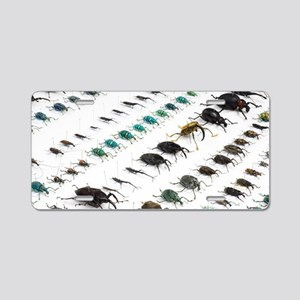 Beetle collection Aluminum License Plate