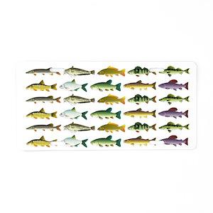 10 European Freshwater Fish Aluminum License Plate