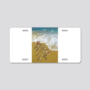 Christmas Seashells and Tre Aluminum License Plate