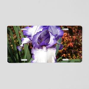 Purple and White Iris Aluminum License Plate