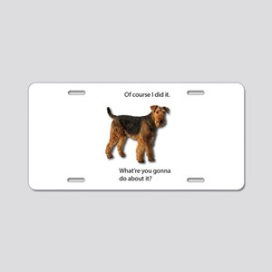 Guilty Airedale Shows No Re Aluminum License Plate