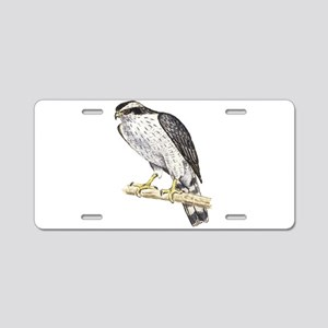 Northern Goshawk Aluminum License Plate