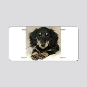 Long Haired Puppy Aluminum License Plate