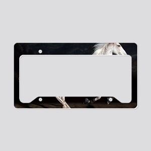 fastzoe_lp License Plate Holder