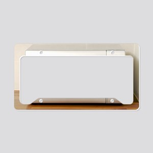 Domestic microwave oven License Plate Holder
