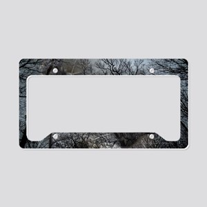 Enchanted forest License Plate Holder