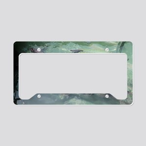 Tarpon Madness License Plate Holder