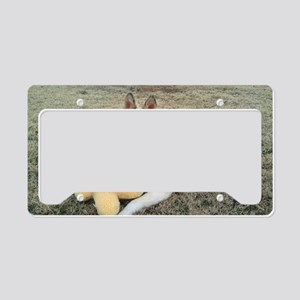 foxyandtoy License Plate Holder