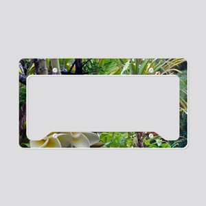 Tropics With Plumeria License Plate Holder