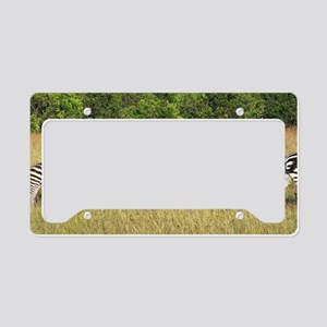 Dazzle of Zebras License Plate Holder