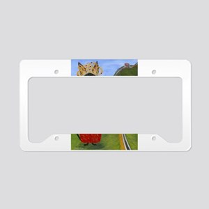 Siamese Queen of China License Plate Holder