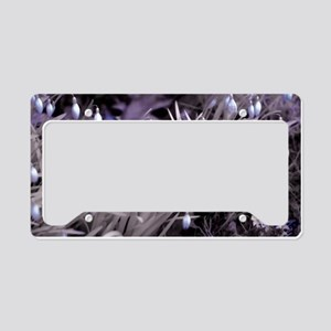 Snowdrop Near-Infrared License Plate Holder