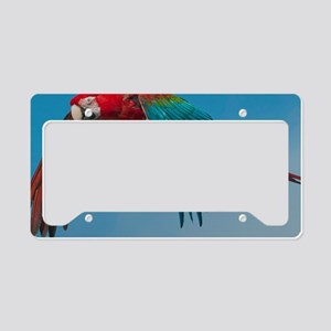 2300x2300 Steve greenwing License Plate Holder