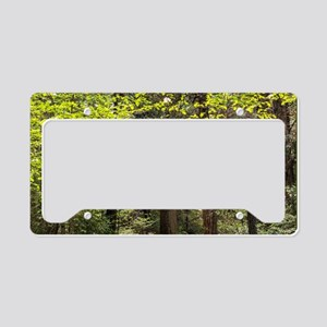Forest Trail License Plate Holder