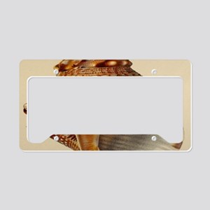 vintage botanical sea shells License Plate Holder