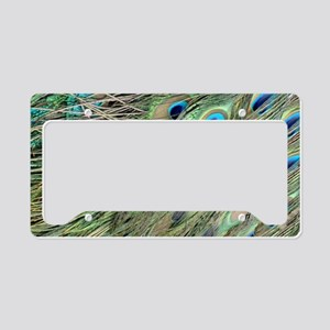 Flowing Peacock Eyes License Plate Holder