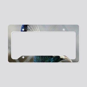 Peacock Head License Plate Holder