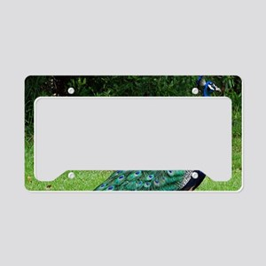 Velvet Blue Peacock License Plate Holder
