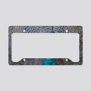 Peacock Learning To Dance License Plate Holder