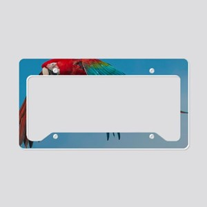 Green-winged Macaw License Plate Holder