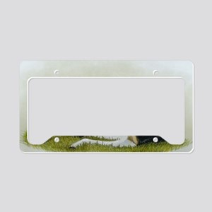 buckskin paint foal License Plate Holder