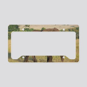 African Elephant License Plate Holder