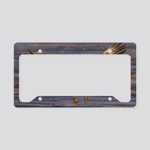 x14  landing gear License Plate Holder