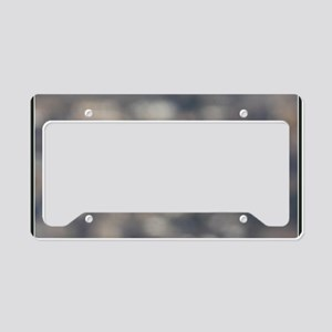 x14b  Highflight License Plate Holder