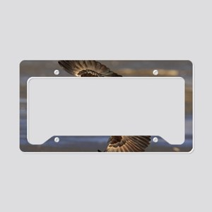 x14 roundhouse License Plate Holder