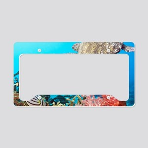 Turtle and Fishes Under Water License Plate Holder