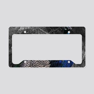 Vibrant Blue Peacock License Plate Holder