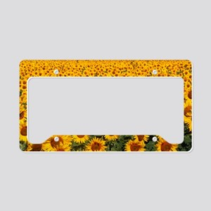 Field of sunflowers, France License Plate Holder