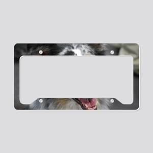 Australian Shepherd Herd Dog License Plate Holder