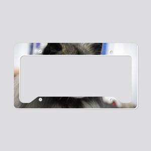 Keeshond License Plate Holder