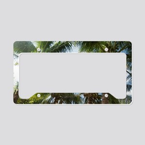 Coconuts and coconut palms License Plate Holder
