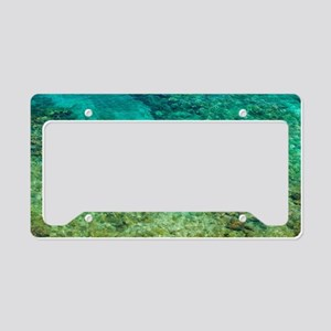 Shallow clear water with cora License Plate Holder