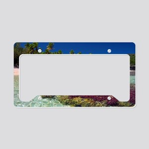 Beautiful golden coral beach License Plate Holder
