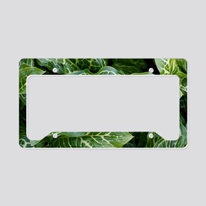 Lords and ladies (Arum italic License Plate Holder