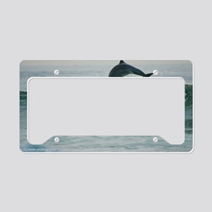Happy Dolphin License Plate Holder