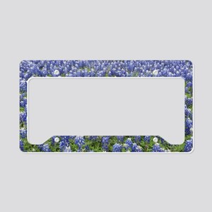 Bluebonnets License Plate Holder